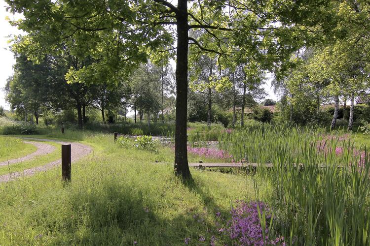 Van mierlo tuinen exclusieve tuinontwerpen u architectuurguide